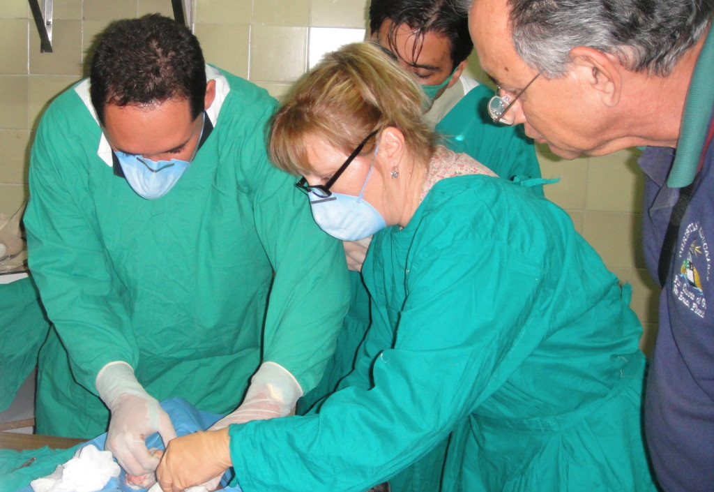 Canadian nurse teaching insertion of chemotherapy infusion line to Cuban Oncologist
